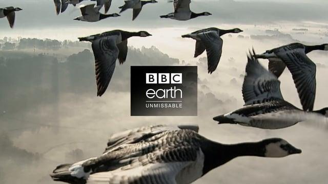 BBC Earth Idents Overview